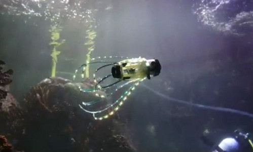 The squid-like robot moving through water.